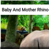 Baby And Mother Rhino Jigsaw Puzzle Game