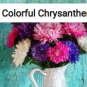 Colorful Chrysanthemums In A White Vase Jigsaw Puzzle Game