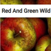 Red And Green Wild Apples Jigsaw Puzzle Game