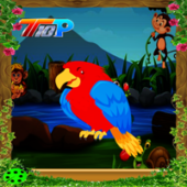 Top10 Rescue The Parrot