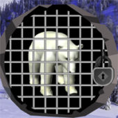 Wow North Pole Bear Escape