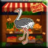 G2J Masai Ostrich Escape