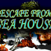 Top10 Escape From Sea House