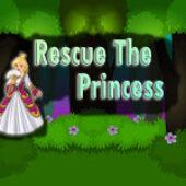 Top10 Rescue The Princess