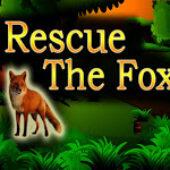 Top10 Rescue The Cute Fox