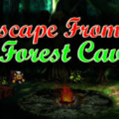 Top10 Escape From Forest Cave
