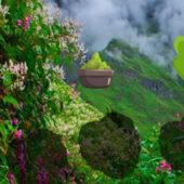 G2R Adventure Journey Escape 4