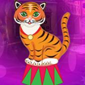 G4K Comely Circus Tiger Escape