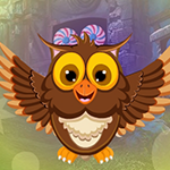 G4K Joyous Owl Escape