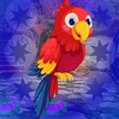 G4K Macaw Parrot Escape
