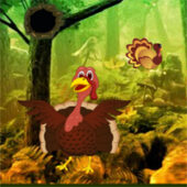 G2R Giant Turkey Forest Escape