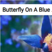 Butterfly On A Blue Flower Jigsaw Puzzle Game