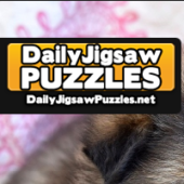 Cute Eurasier Puppies Jigsaw Puzzle Game