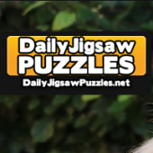 Cute Chow Chow Resting Jigsaw Puzzle Game