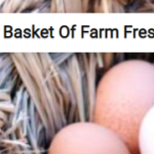 Basket Of Farm Fresh Eggs Jigsaw Puzzle Game