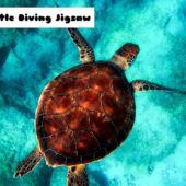 8B Turtle Diving Jigsaw